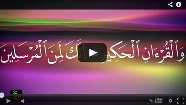 سورة ياسين كاملة بخط مصحف مصر وصوت العفاسي