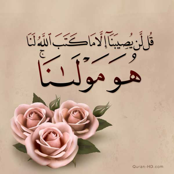 Quran Hd 009051 هو مولانا Quran Hd