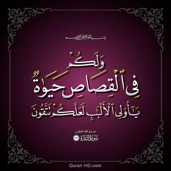 Quran Hd 002179 ولكم في القصاص حياة يا أولي الألباب Quran Hd